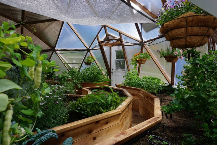 Greenhouse Planting Guide - East Zone