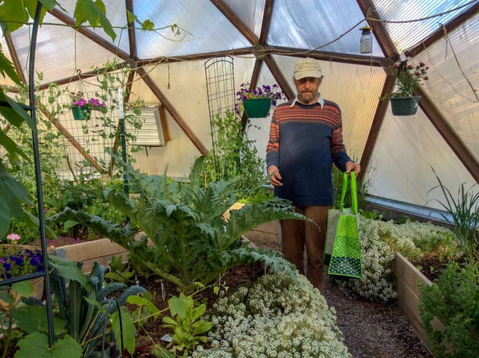 Greenhouse Planting Guide